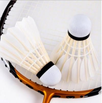 3. Bachtal Badminton-Turnier  für Aktive und Hobbyspieler